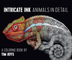 Intricate Ink Animal Coloring Books