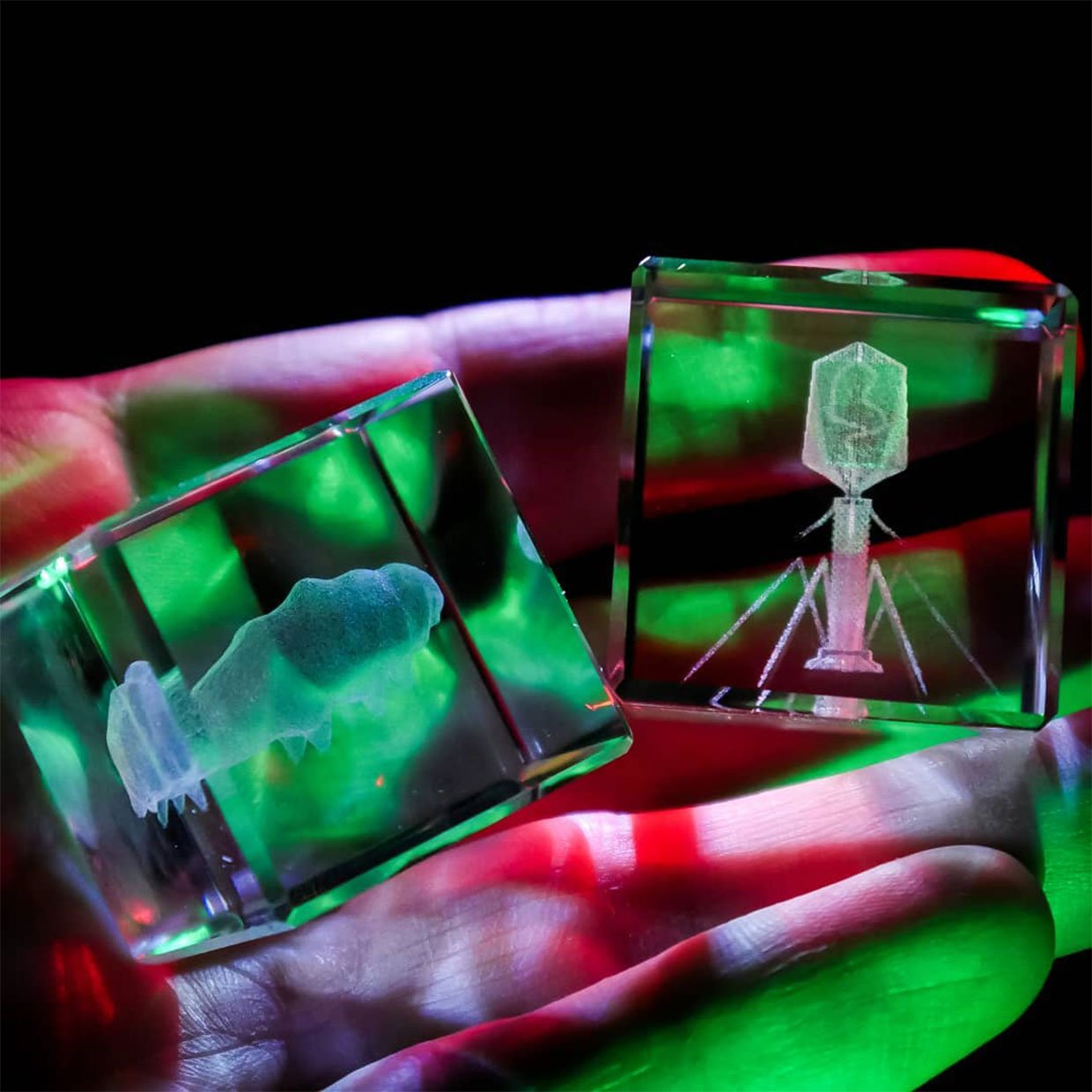 The Microcosm in Glass