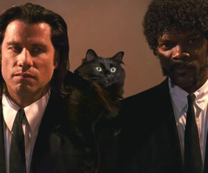 Pulp Fiction with a Cat