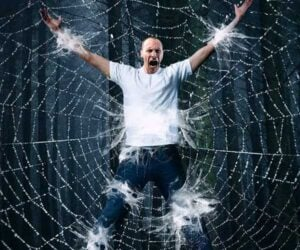Human vs. Giant Spider Web
