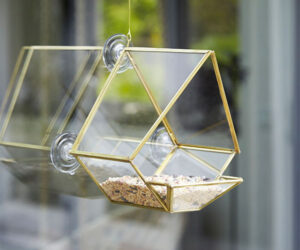Glass House Bird Feeder