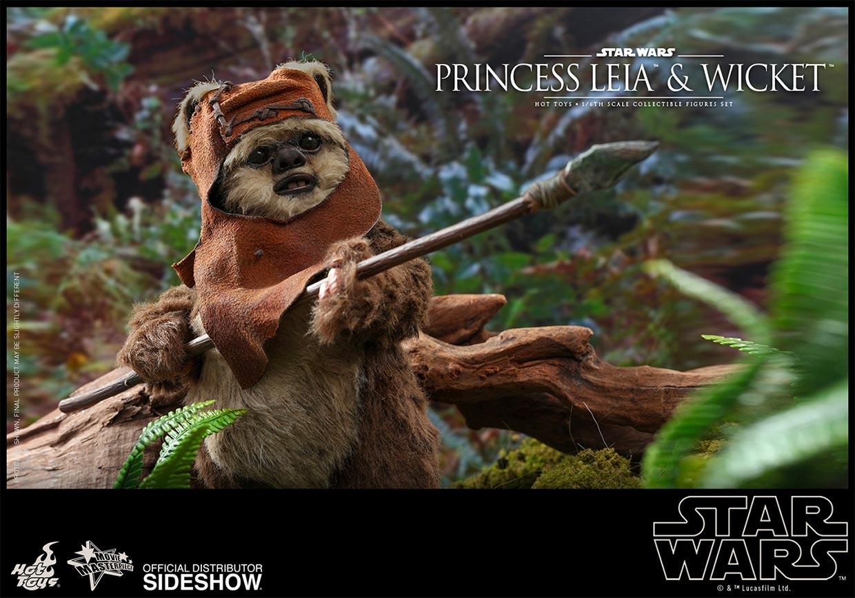 Hot Toys Princess Leia + Wicket