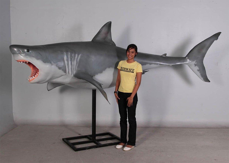 12-Foot Shark Model
