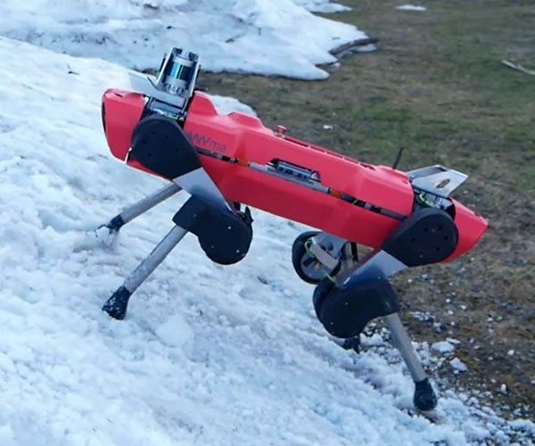 Robot Learns to Climb Terrain