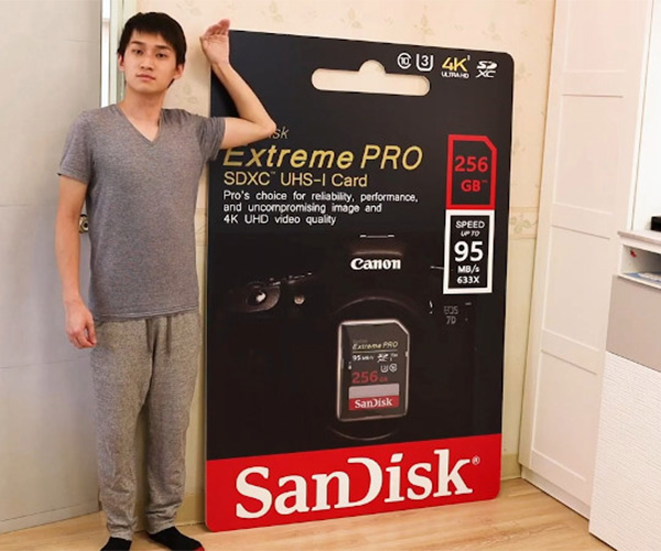 Giant SD Card