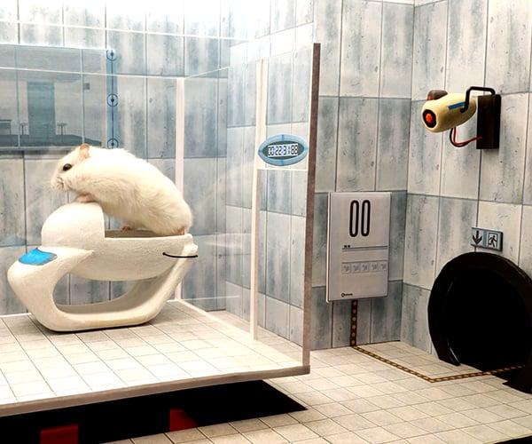 Portal Hamster Maze