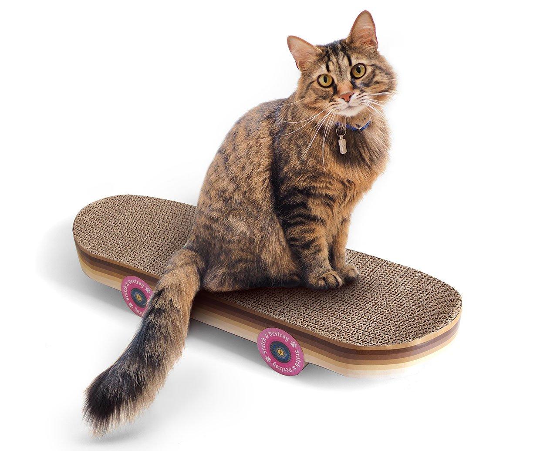 Cat Scratch Skateboard