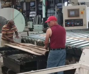 How Wood Veneer Is Made