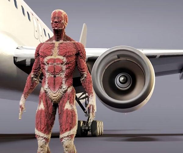 Human vs. Airplane Engine Simulation