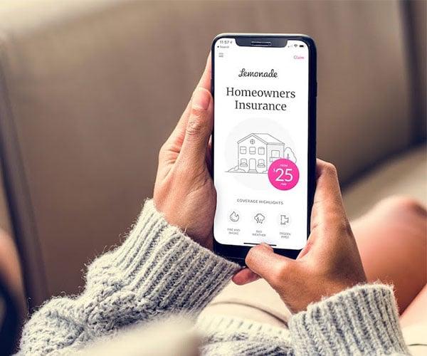Lemonade Home and Renters Insurance