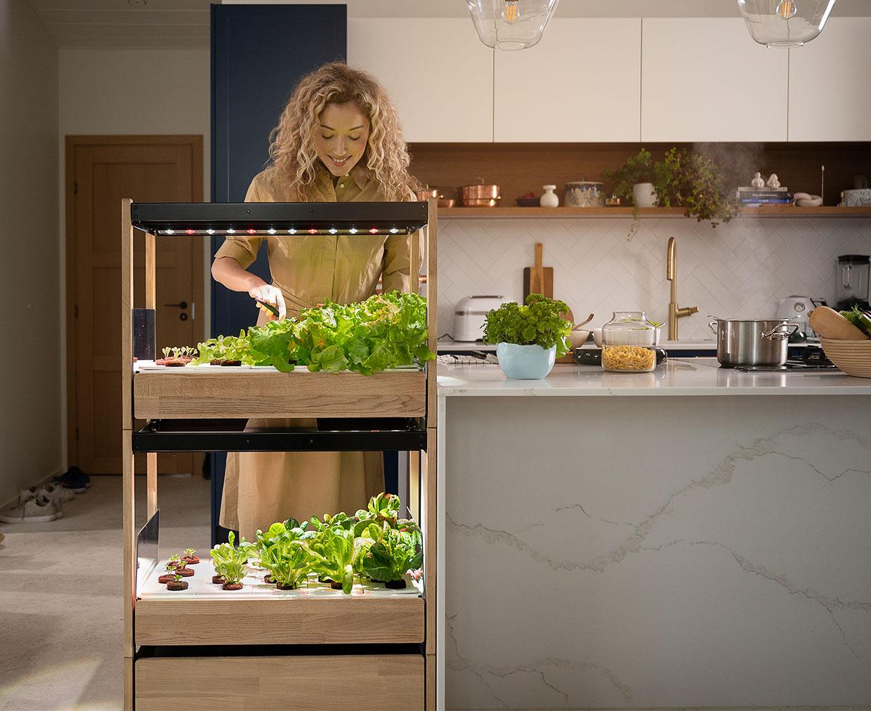 Click & Grow 25 Indoor Garden