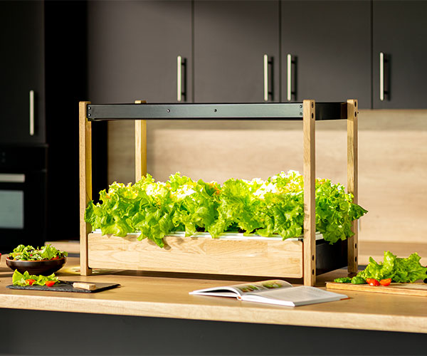 Click & Grow 25 Indoor Garden