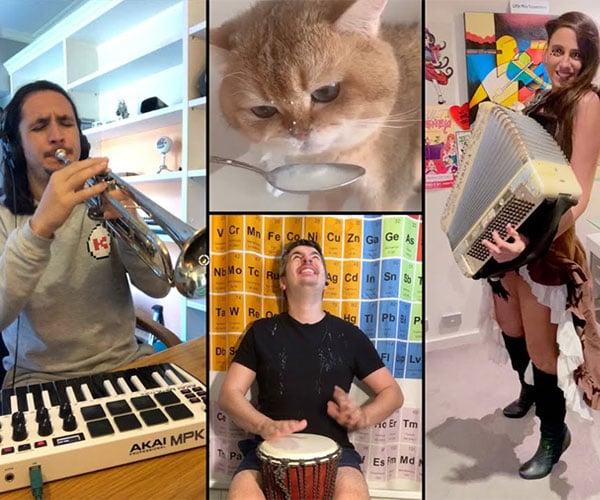 The Kiffness x Numnum Cat: International Mix