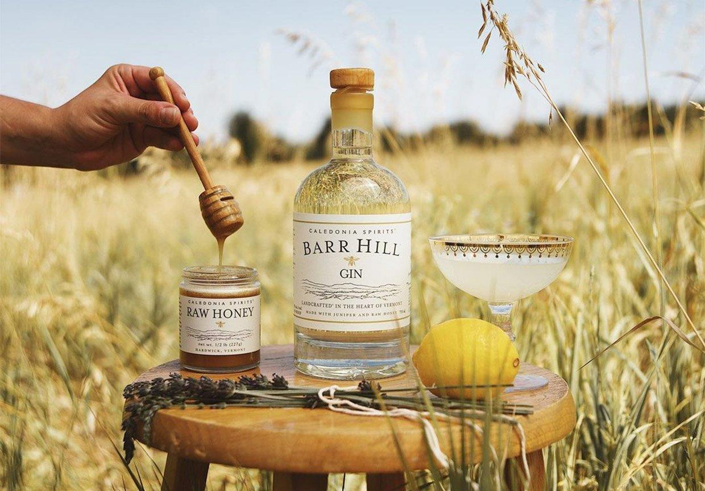 Barr Hill Gin