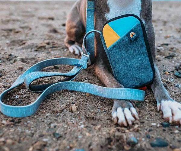 Grab & Go Dog Leash + Bag