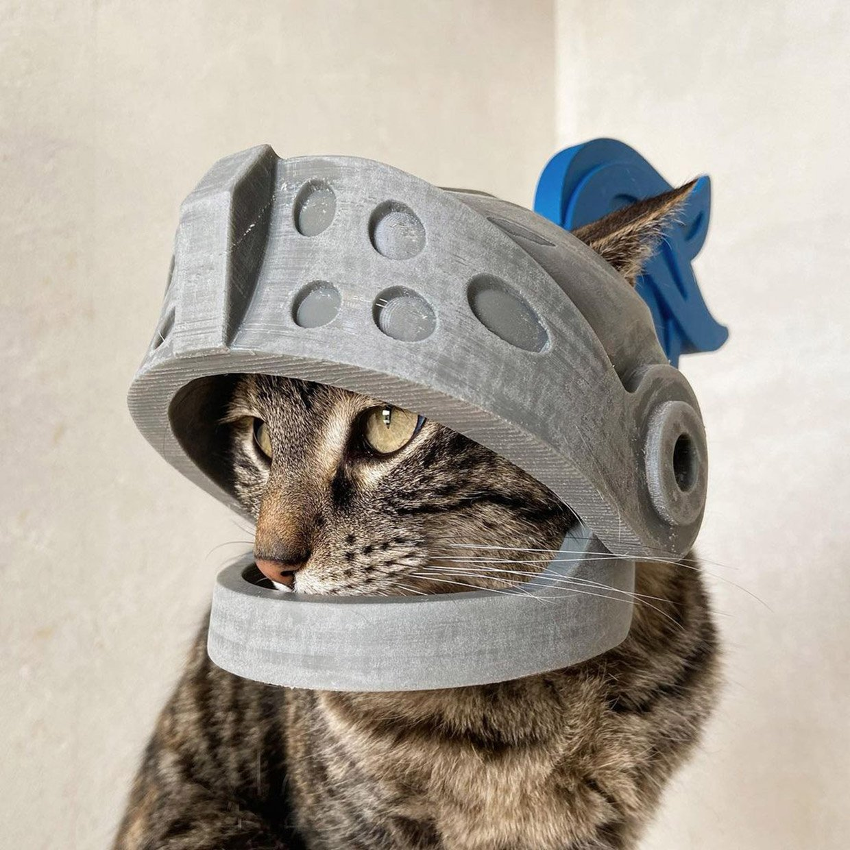 3D-Printed Cat Helmets