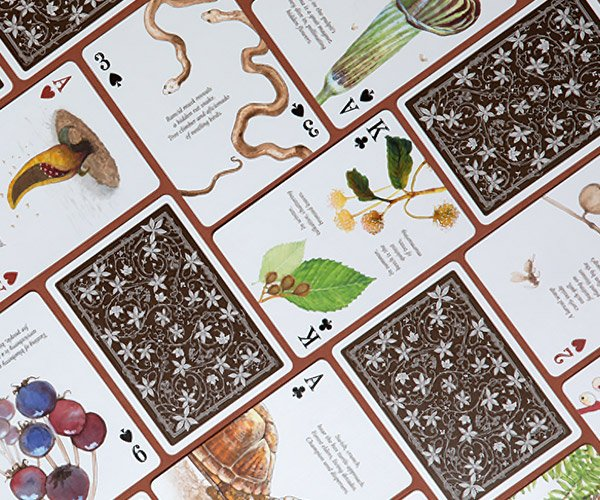 Eastern Forest Playing Cards
