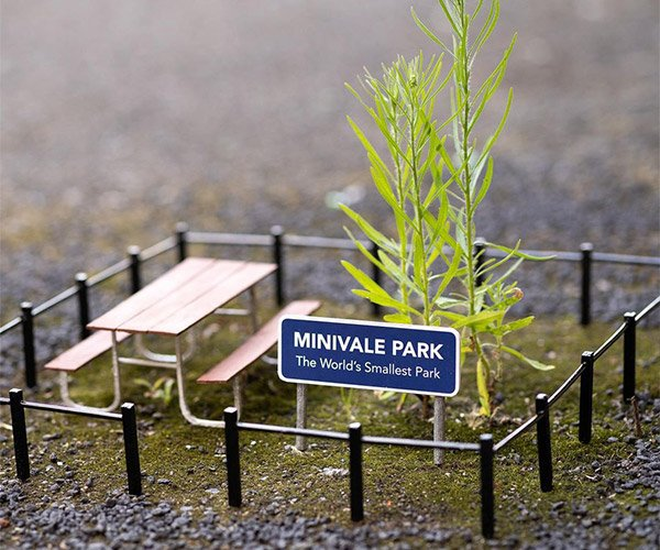 Signs for Tiny Places